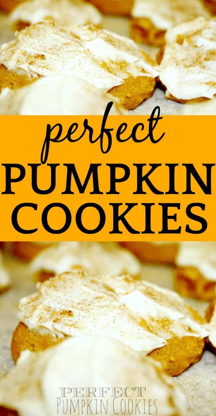 Perfect Pumpkin Cookies