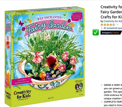 Fairy Garden Kit: Amazon's Choice