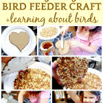 Homemade Bird Feeder Recipe Craft for Kids