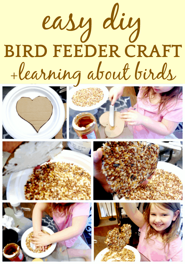 Homemade Bird Feeder Craft for Kids