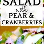 Easy Apple Salad with Pear and Cranberry