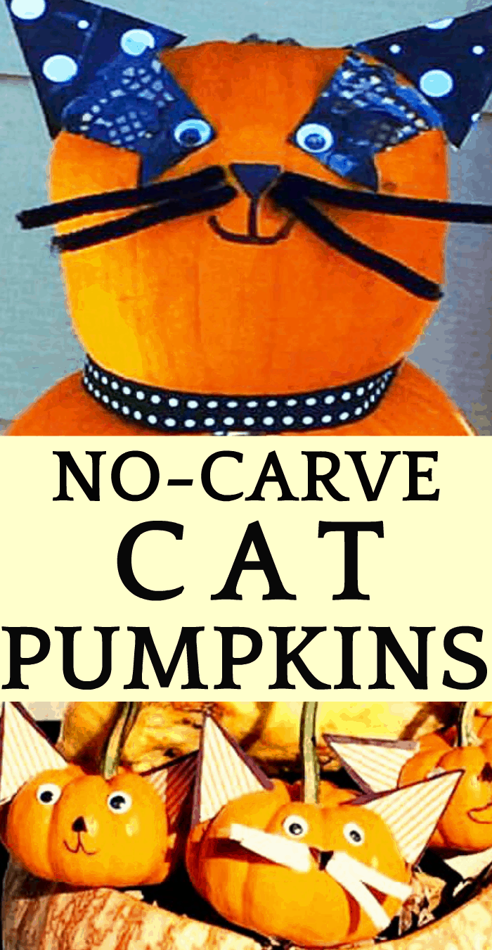 Pumpkin Ideas and Super Easy No Carve Cat Pumpkins
