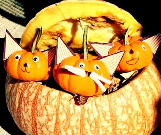 Pumpkin Craft Kittens