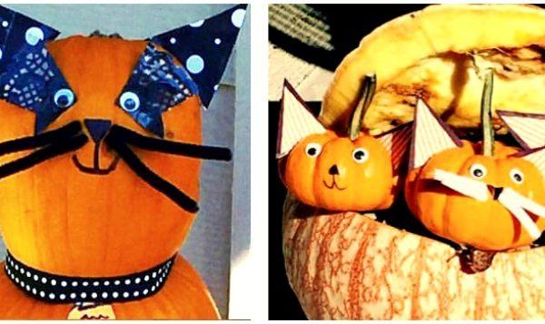 Pumpkin Ideas and Super Easy No-Carve Cat Pumpkins