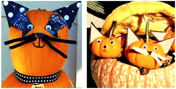 Pumpkin Ideas and Super Easy No-Carve Cat Pumpkins