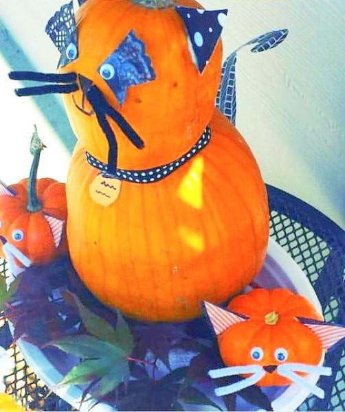 cat designs on pumpkins