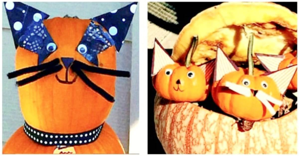 pumpkin design ideas with decorated no carve pumpkin cats