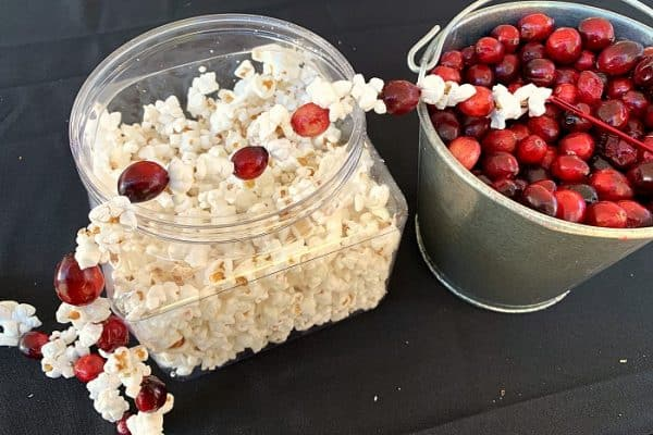 How To Make Popcorn Garland With Cranberries