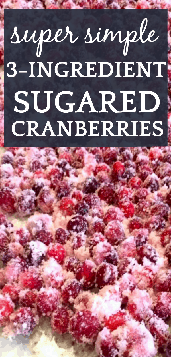 Super Simple Sugared Cranberries Recipe sugared cranberries spread across a table