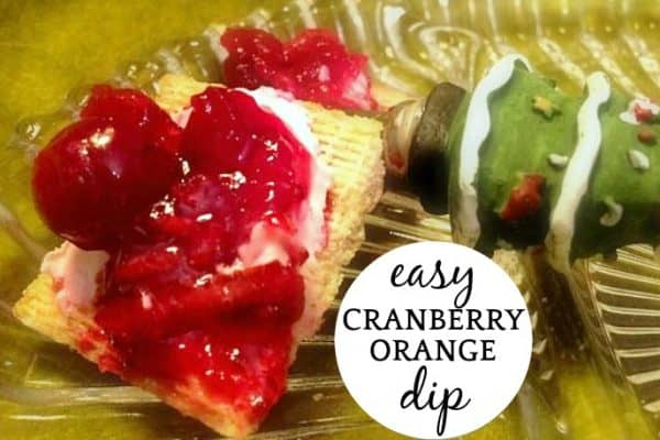 Easy Cranberry Cream Cheese Dip