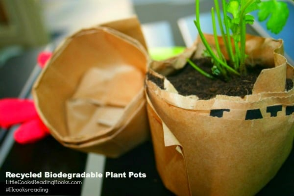 How To Make DIY Plant Pots