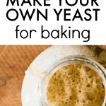 HOW TO MAKE YEAST AT HOME