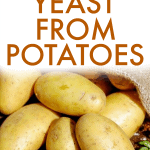 How To Make Yeast From Potatoes