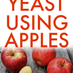 How To Make Yeast from Apples