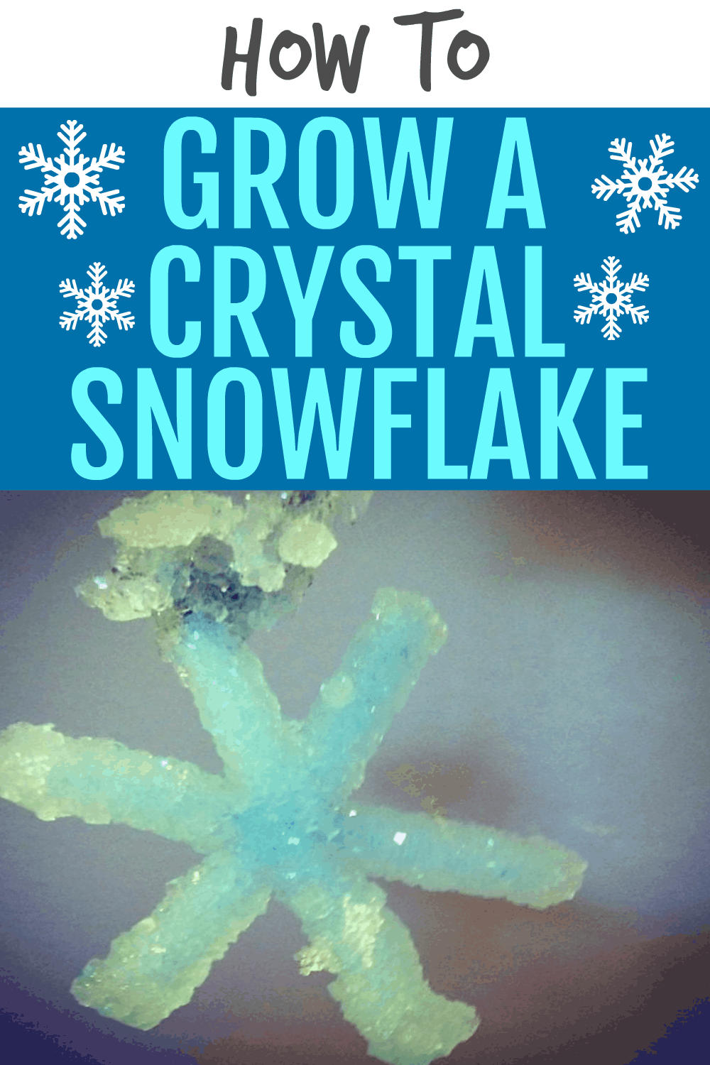 SNOWFLAKE CRAFT FOR KIDS TEXT OVER A CRYSTAL BLUE SNOWFLAKE