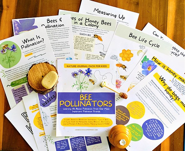 Bee Pollinator Printable Pack spread on a table