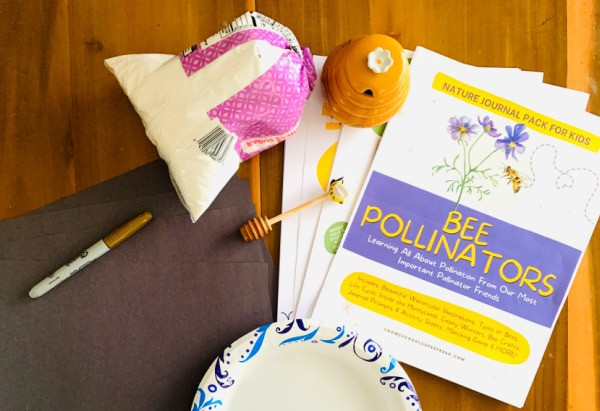 Pollinator Craft materials on a table