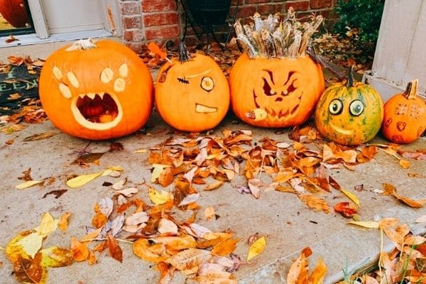 Halloween Ideas for Family no carve pumpkins